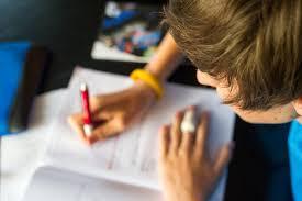 essay writing help